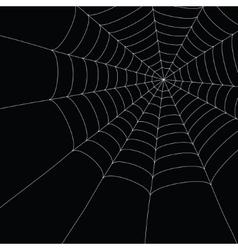 White spider web vector