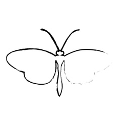 Butterfly silhouette icon image vector