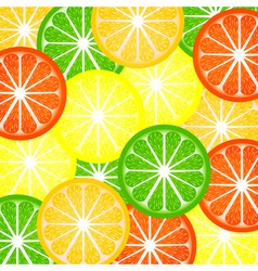 background a citrus vector image