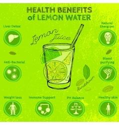 Handdrawn Lemon Infographic vector image