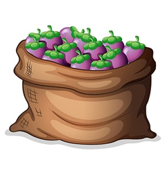 A sack of eggplants vector image vector image