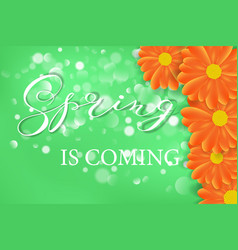Spring lettering design logo decorative vector