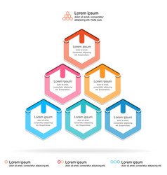 abstract infographics template layered pyramid vector image vector image
