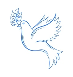 Dove hand drawn dove of peace vector