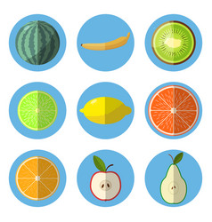 A set of fruit icons in a flat style vector