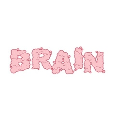 Brain text Letters of convolutions pink Lettering vector image