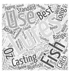 Sf best lures to use in fishing word cloud concept vector