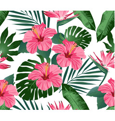 tropical flowers and leaves on background vector image vector image