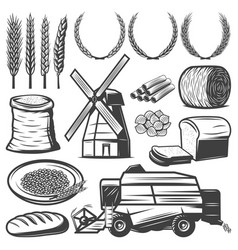 vintage agriculture elements set vector image