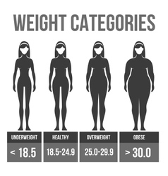 Woman body mass index vector