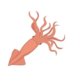 Calamar sea animal vector
