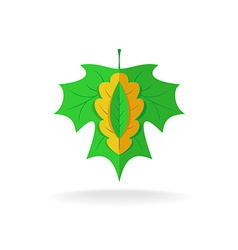 Maple oak and ash tree leaves logo vector image vector image