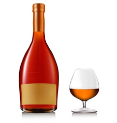 Bottle of brandy with glass vector