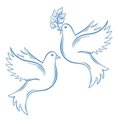 Doves hand drawn dove of peace vector