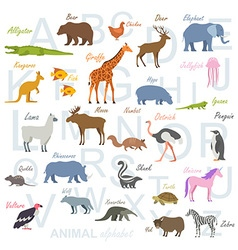 Animal alphabet poster for children vector