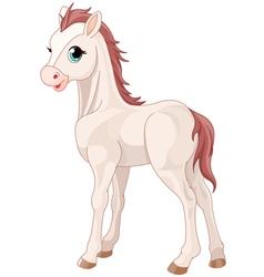 Horse foal vector