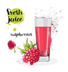 Raspberry juice fresh hand drawn watercolor fruits vector