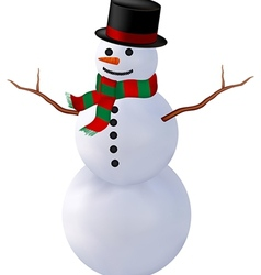snowman isolate2 vector image vector image