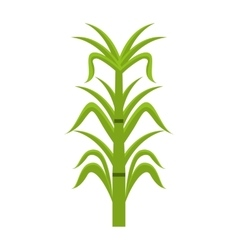 Sugar cane isolated icon design vector