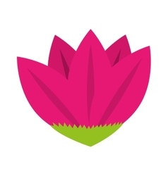 Icon flower spring petals florals isolated vector