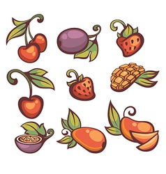 fresh fruit and berries vector image