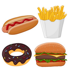 Fast food isolated on white vector