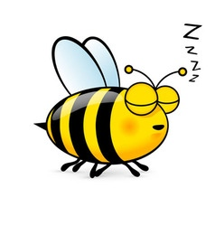 Cartoon bee vector image vector image