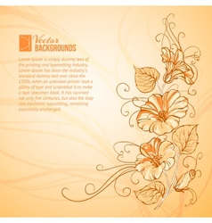 Orange Bindweed vector image vector image
