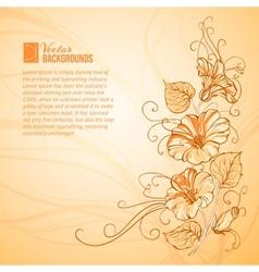 Orange Bindweed vector image