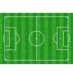 Green soccer field vector