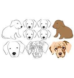 Head of the dog vector image vector image