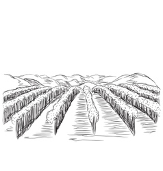 Hand drawn landscape with fields vector