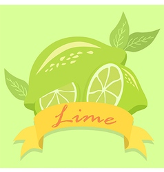 Lime fruit banner vector