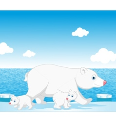 polar bear family vector image