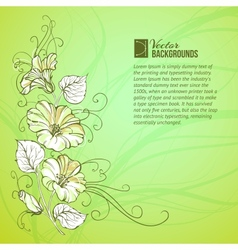 Bindweed on a green background vector image