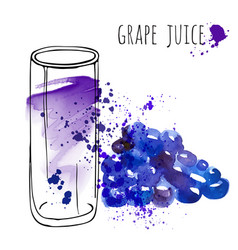 grape juice in glass and grapevine vector image vector image