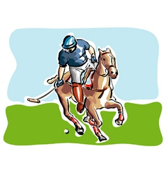 polo player vector image