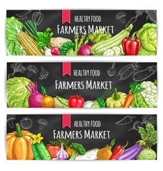 Vegetables vegetarian food banners vector