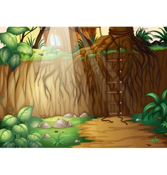 A corded ladder in the jungle vector image