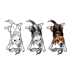 Adorable beagle cheerfully playing toy vector