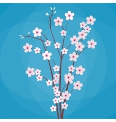 Sakura japan cherry branch vector