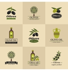Olive logos labels and emblems vector