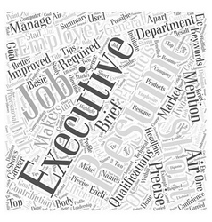 An executive resume should be short precise and vector