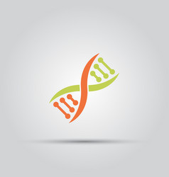 dna isolated colored icon vector image vector image