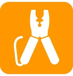 Wire Cutter vector image