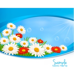 Nature background with daisy vector