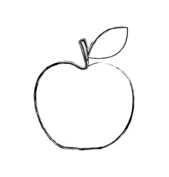 apple fresh fruit icon vector image