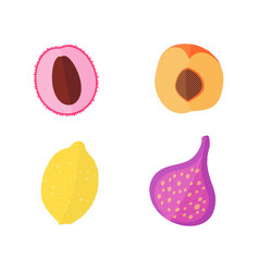 four flat fruits with texture vector image