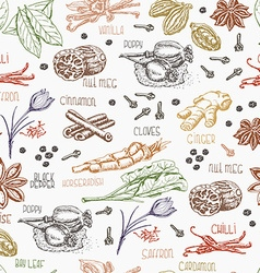 Seamless pattern with multi-colored spices on vector