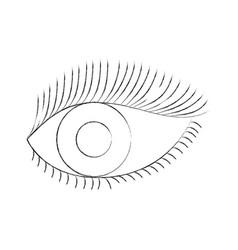 Eye look eyelashes vision cartoon vector